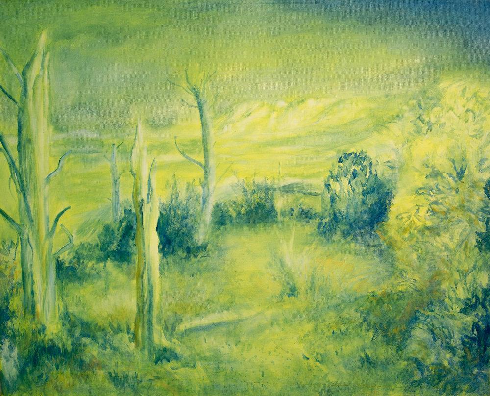 ' Vlakkenberg'   Angelica Lüthi  Oil on canvas  725 x 905 mm  R 6 420.00 excl. vat