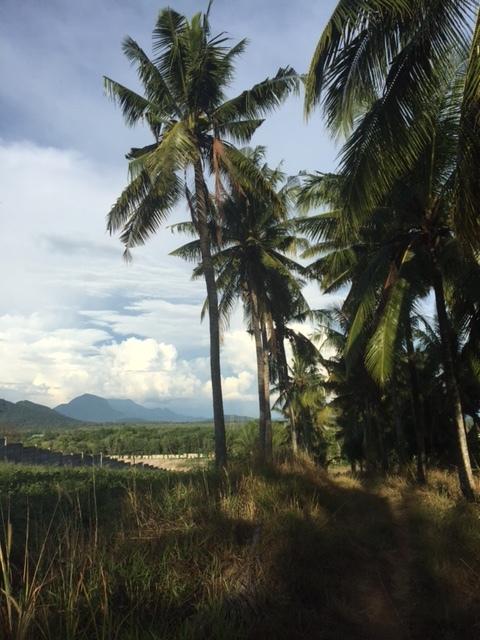 Uitzicht in de buurt van Singkawang, West-Kalimantan.