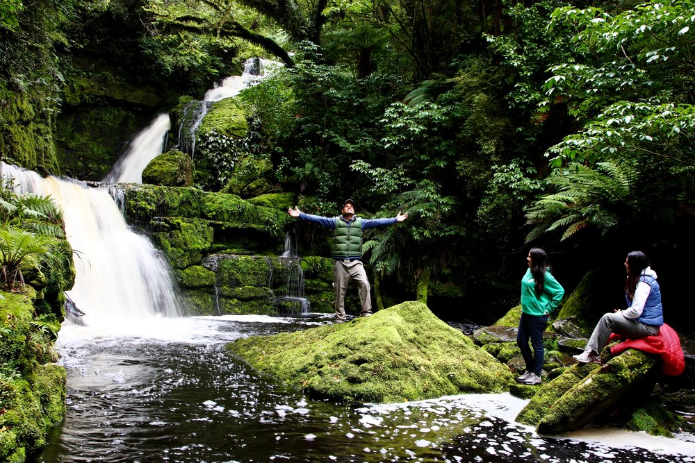 The+Catlins+has+many+beautiful+waterfalls+including+McLean+Falls.jpg