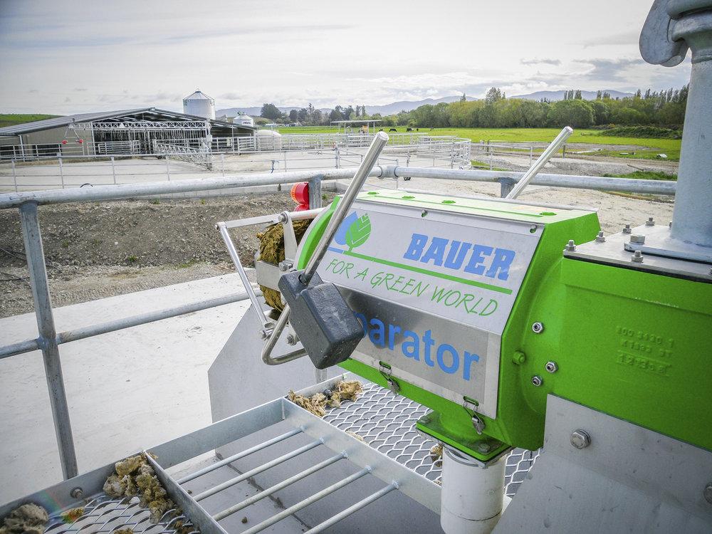 Bauer-Header-Separator (002).jpg