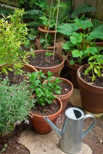 garden-kit.jpg