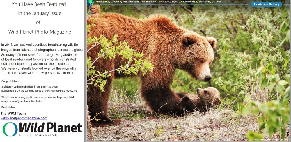 Wild Planet Photo Magazine January Issue 2017