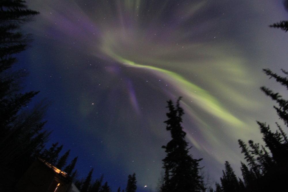 Tagish Northern Lights