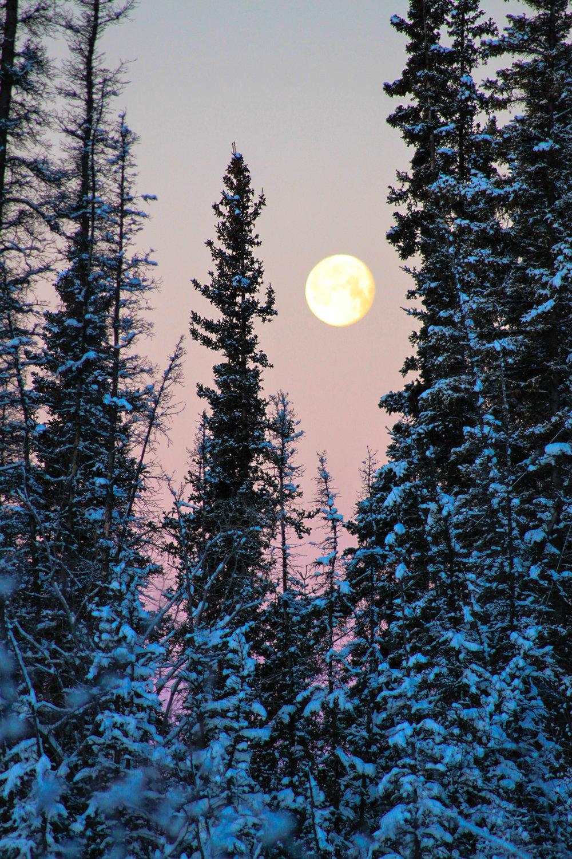 Full Moon III