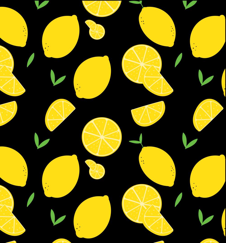 lemon5Artboard 3 copy.png