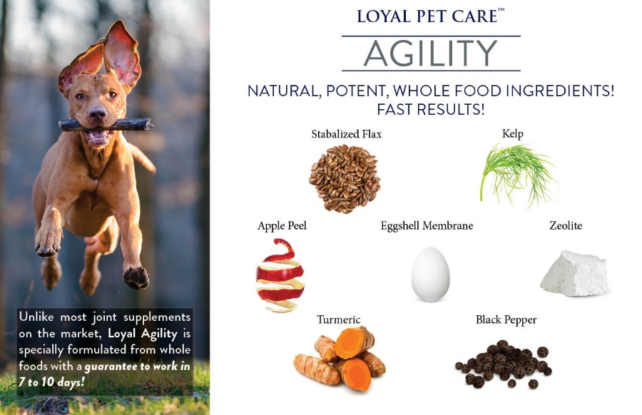 LOYAL PET CARE IS PROUDLY BRINGS TO YOU A NEW, INNOVATIVE AND 100% NATURAL JOINT SUPPLEMENT!