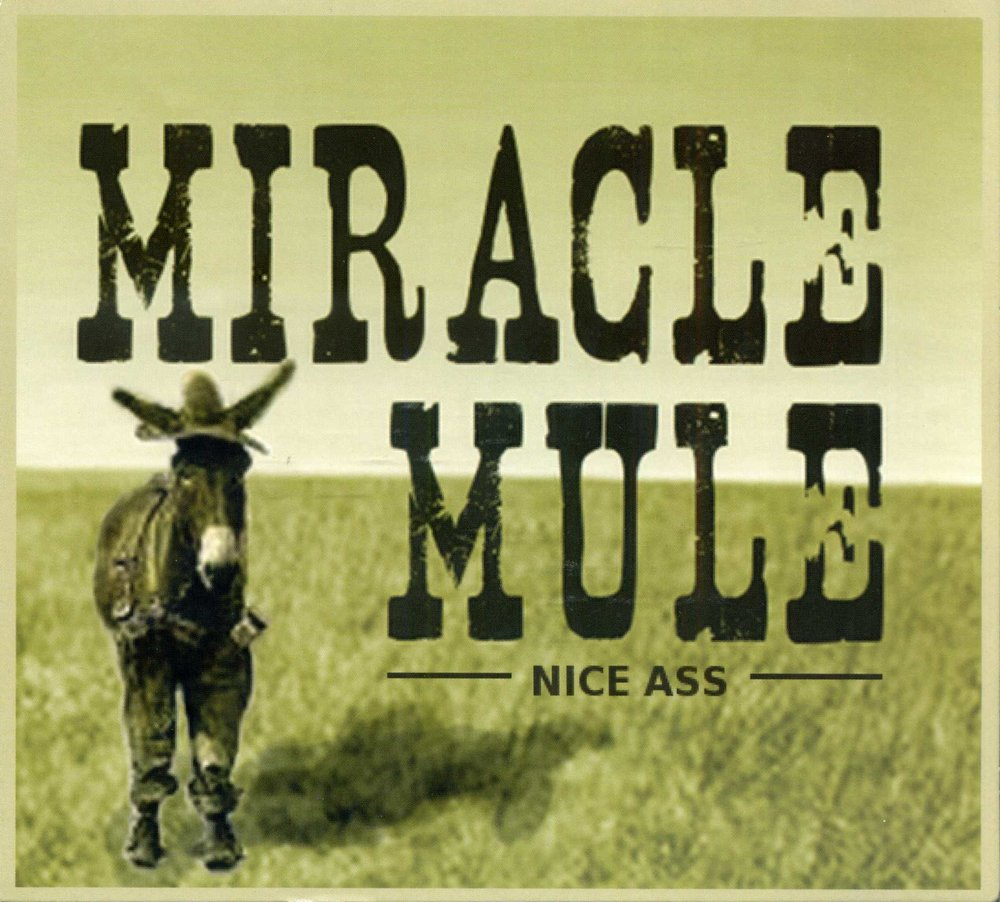 MiracleMule_NiceAss001.jpg