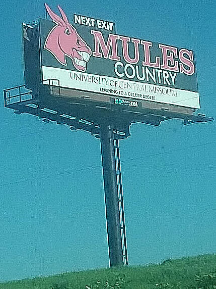 Mules Country2.jpg