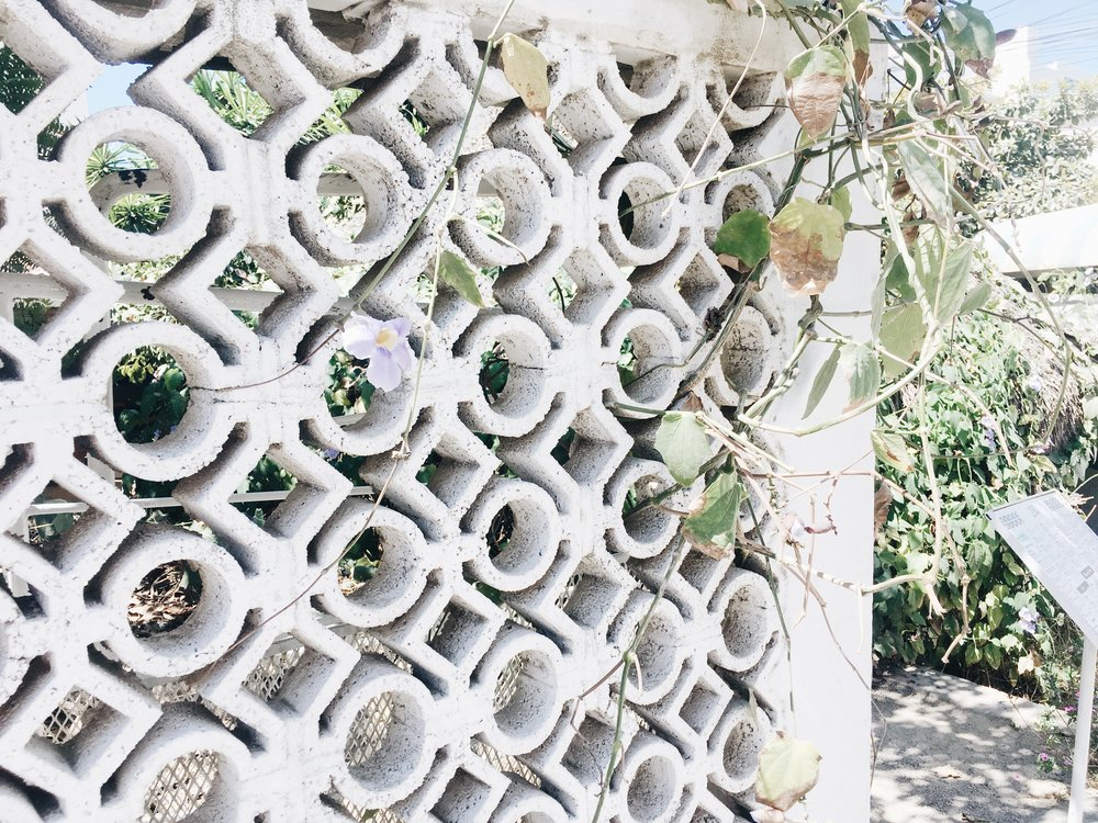 This was just a wall we passed, but love how the flowers/vines are going in and out of the circles and diamonds.