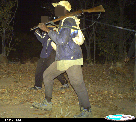 Camera trap photographs poachers.jpg
