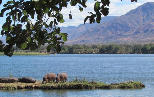 View from Vundu Point small.jpg