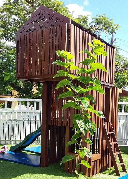 treehouse resize.jpg