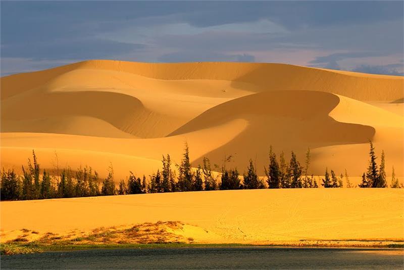 sand-dunes-in-bau-trang-787.jpeg