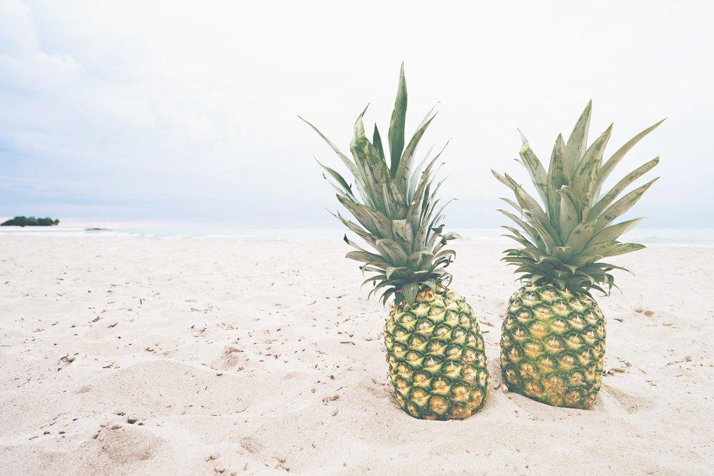 pineapple-supply-co-83073.jpg