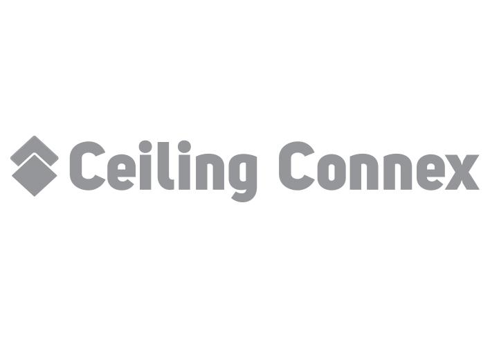 ceiling-connex.jpg