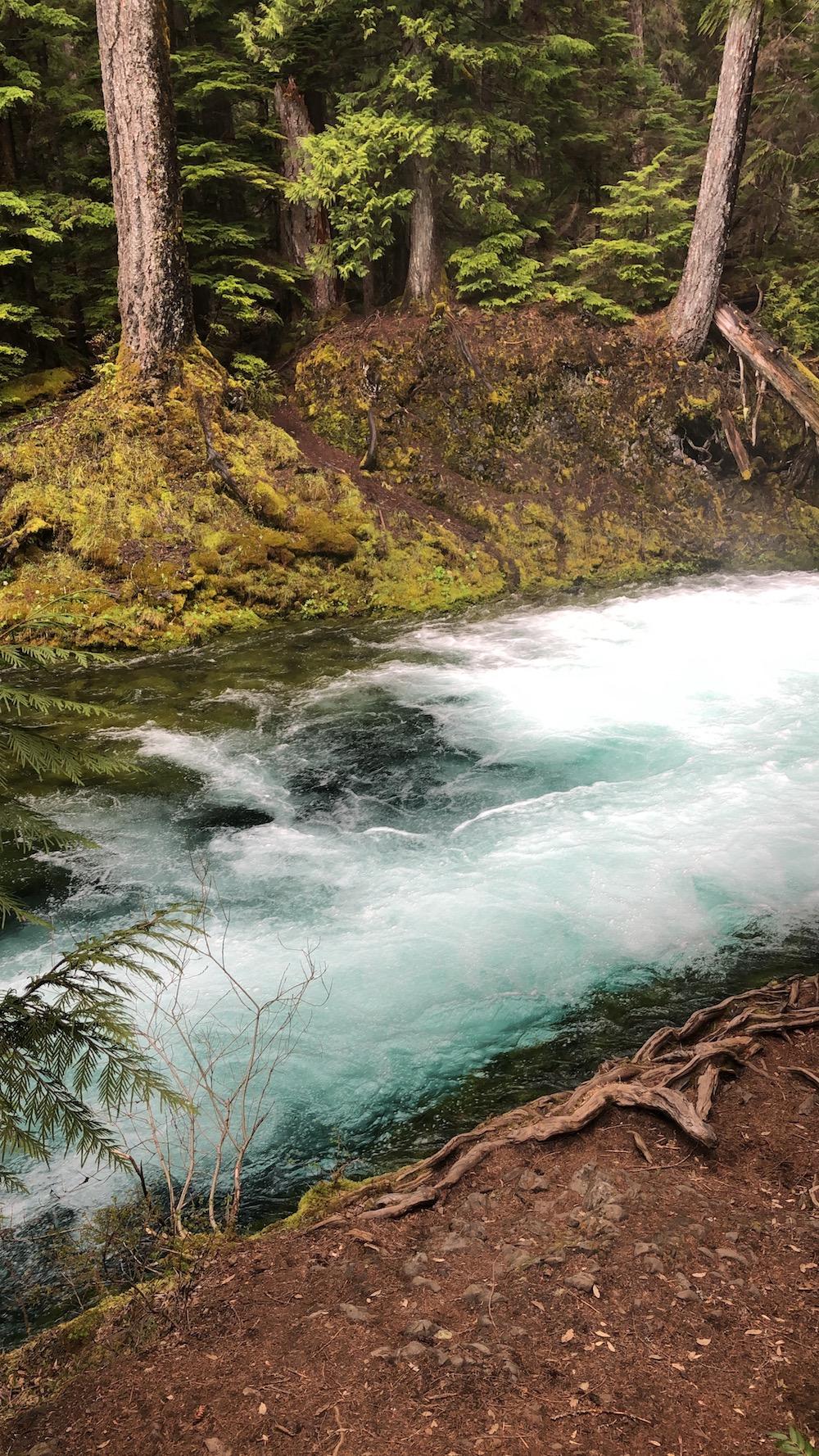 koosah-falls - 4.jpg