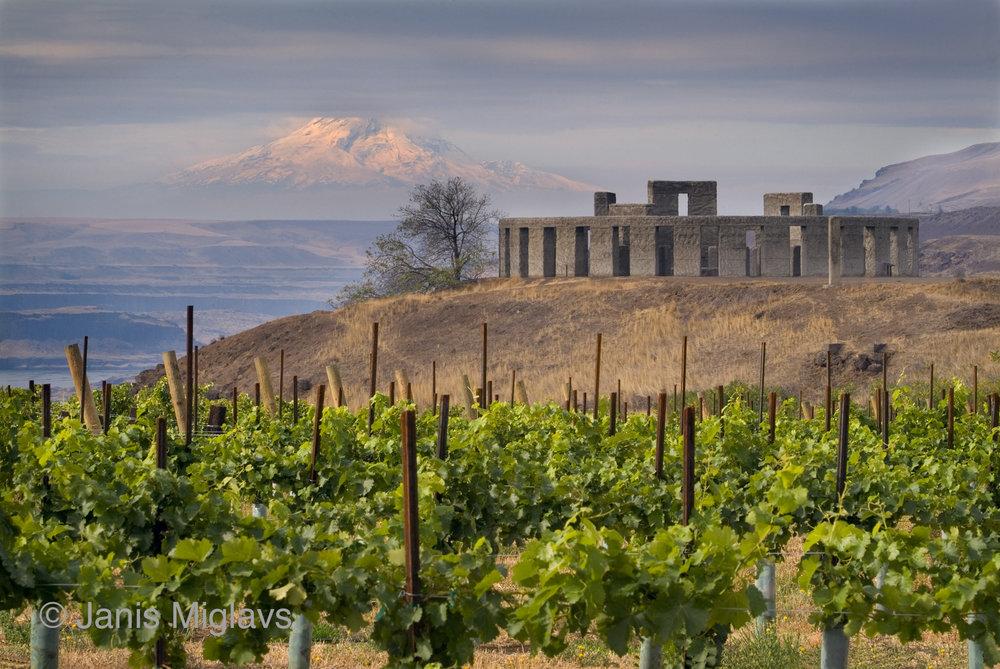 Vineyard with Stonehenge