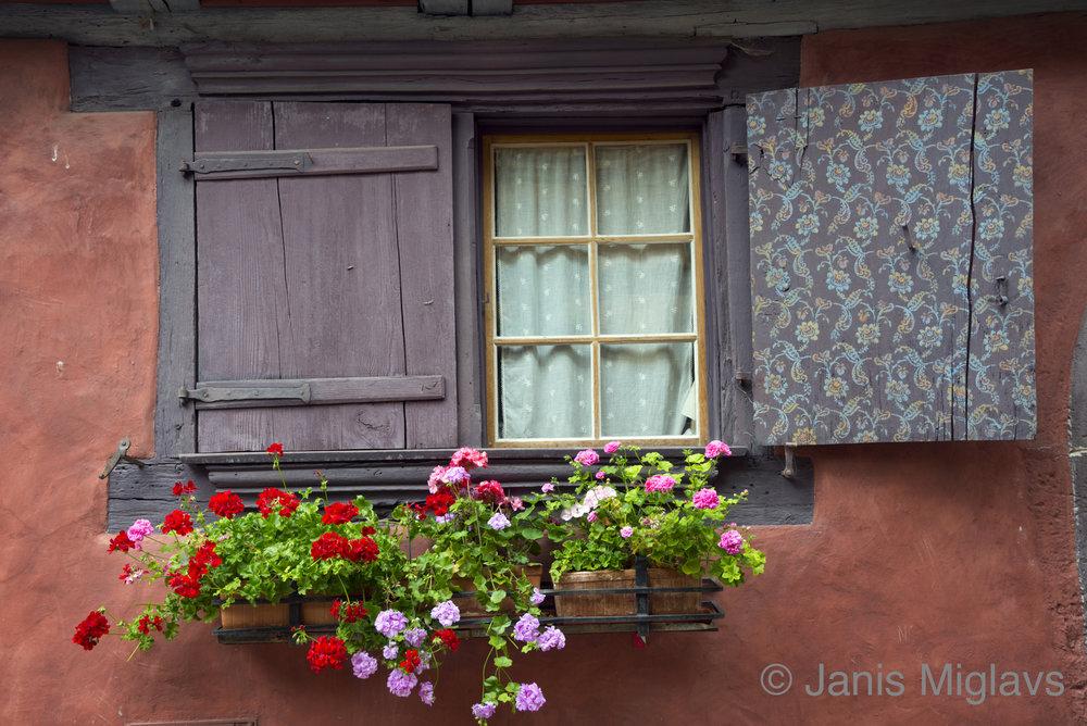 France Equisheim Window