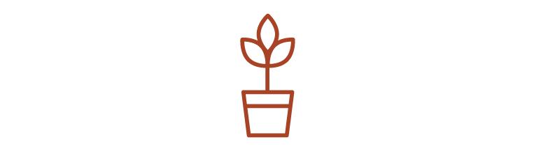Carousel Ranch Logo-05.jpg