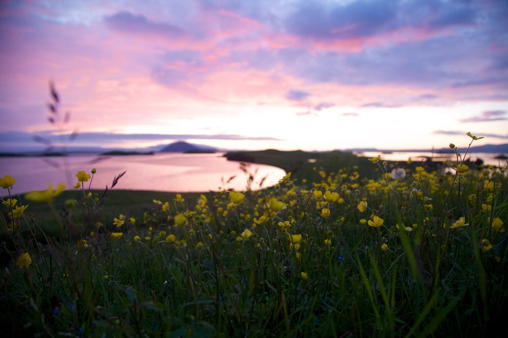 Icelandic sunset - 24-105 on Canon 5D MkII