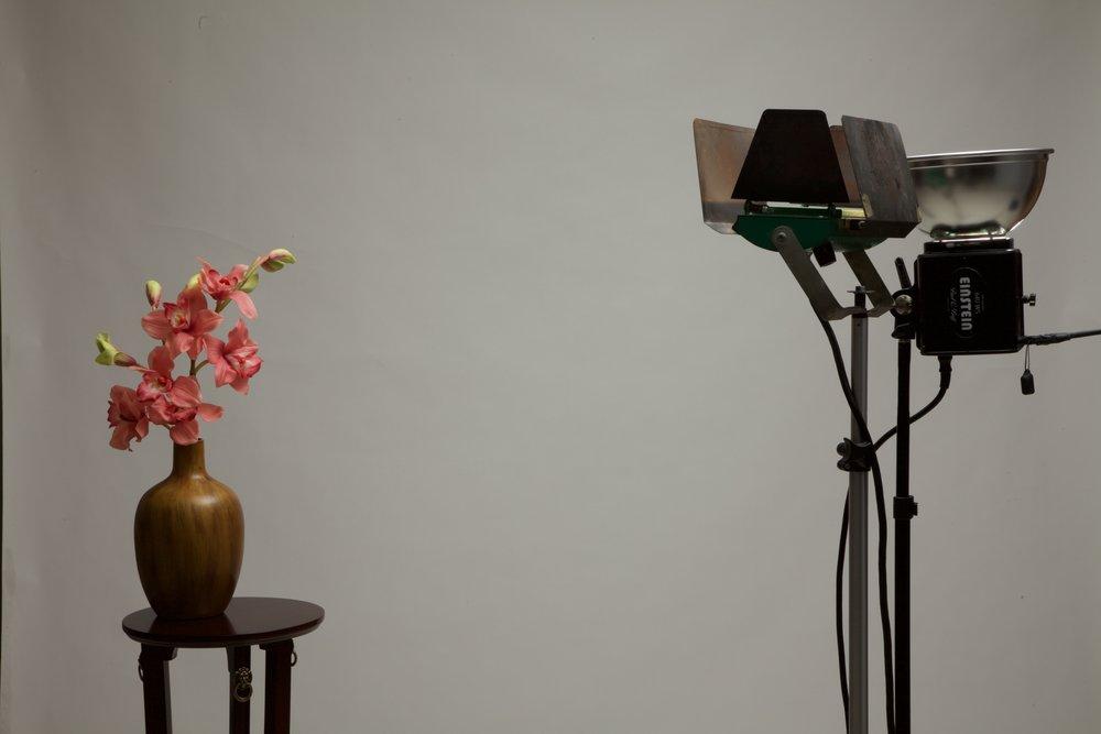 640 watt second studio flash - 1/125th second at f22 ISO 100