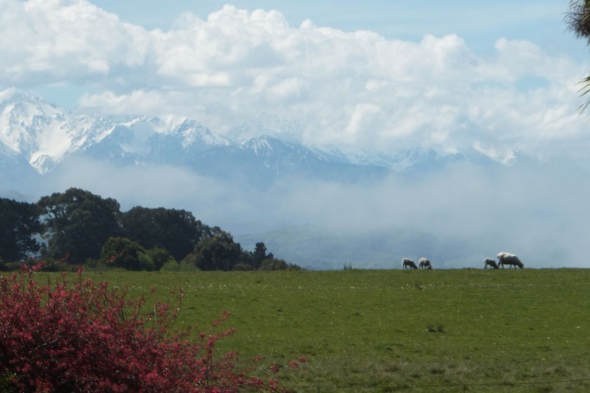 2014-10-12-13.37.50-Mountains-and-House-Paddock.jpg