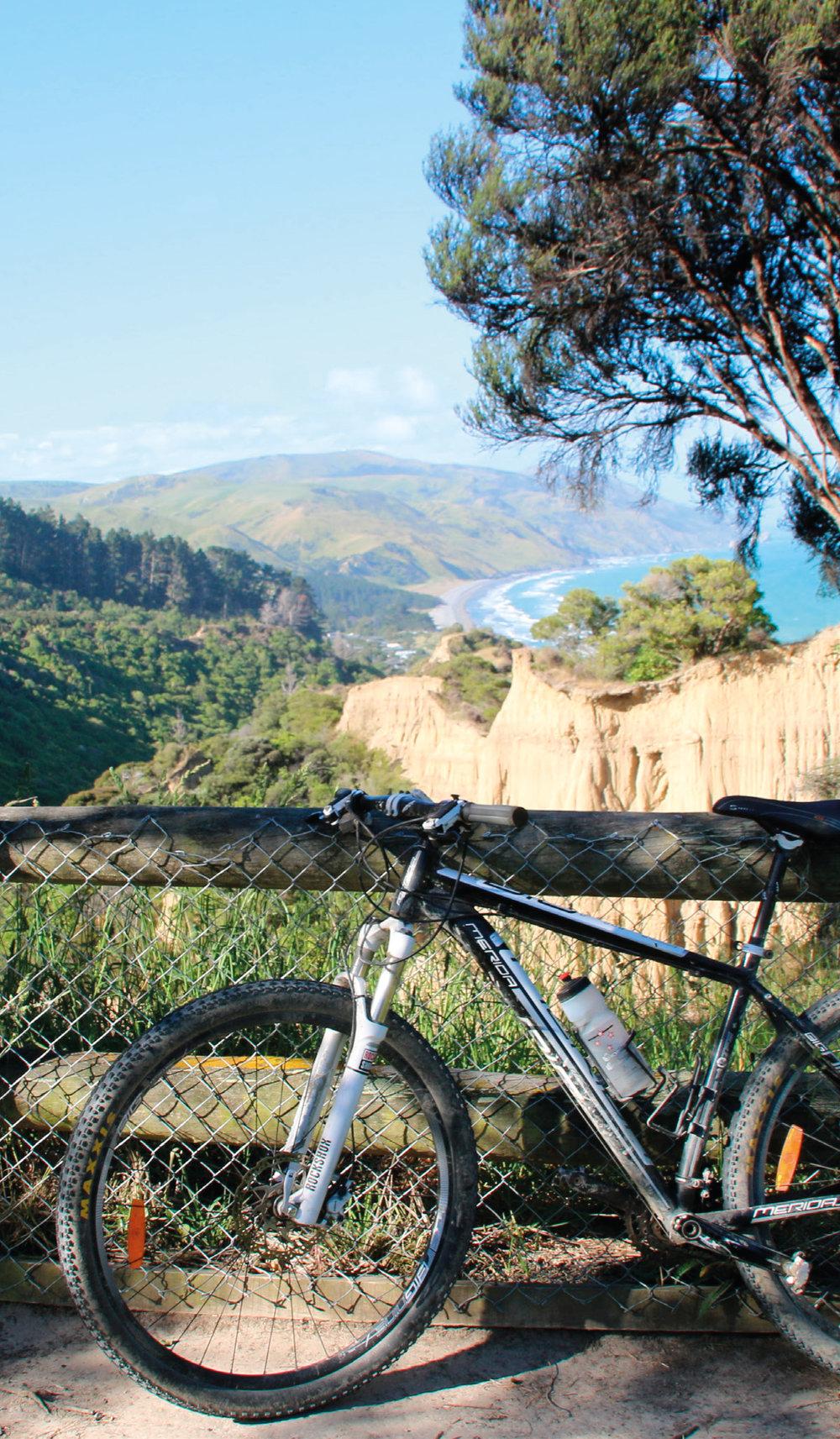 Cycling Cover-01.jpg