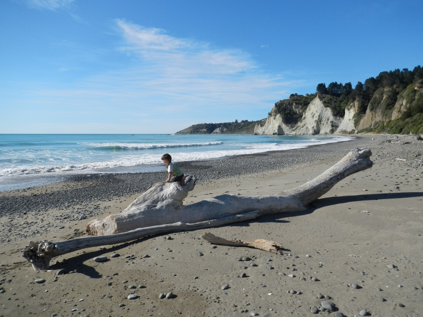 Kid-on-driftwood.jpg