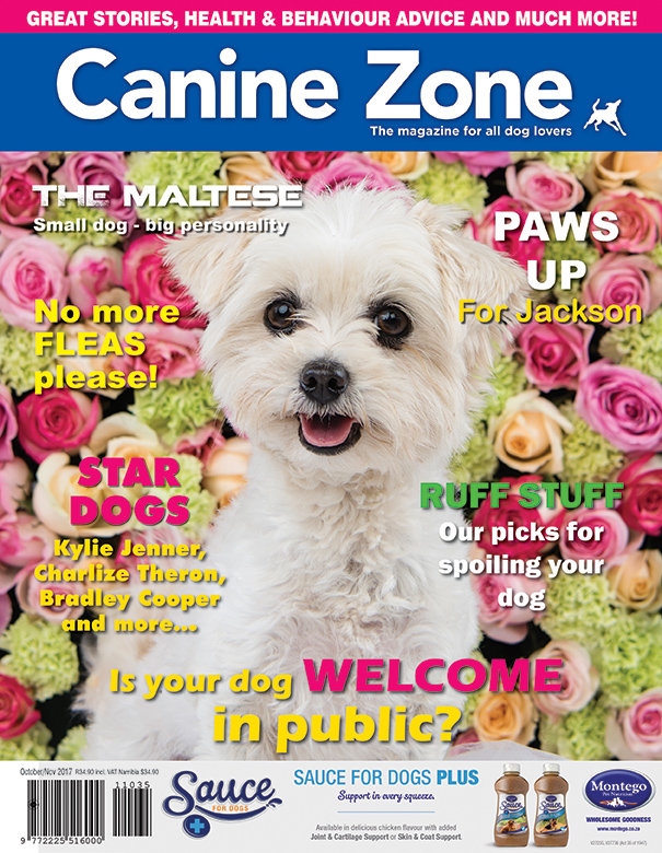 CZ  FRONT COVER October November 2017 copy.jpg