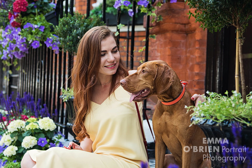 dog portrait photography chelsea london