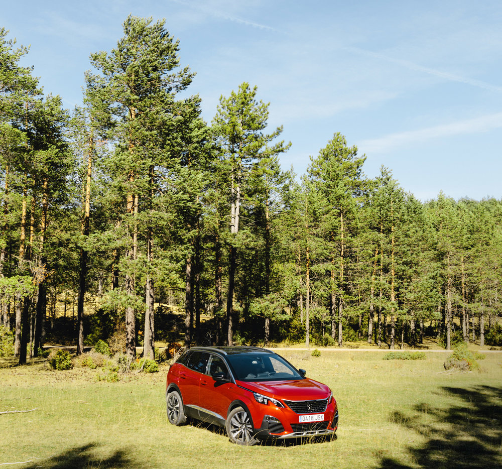 004_Peugeot.jpg