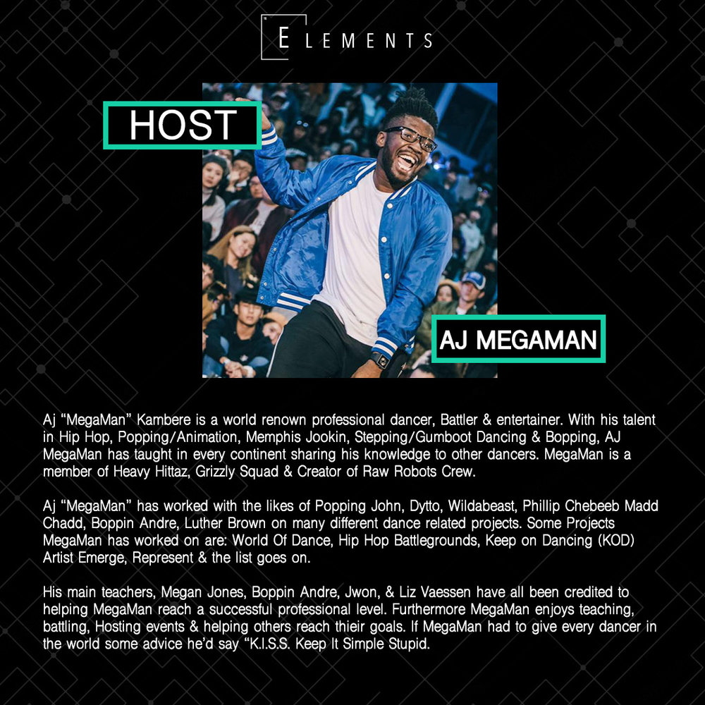Elements 18 - Host - Aj.jpg