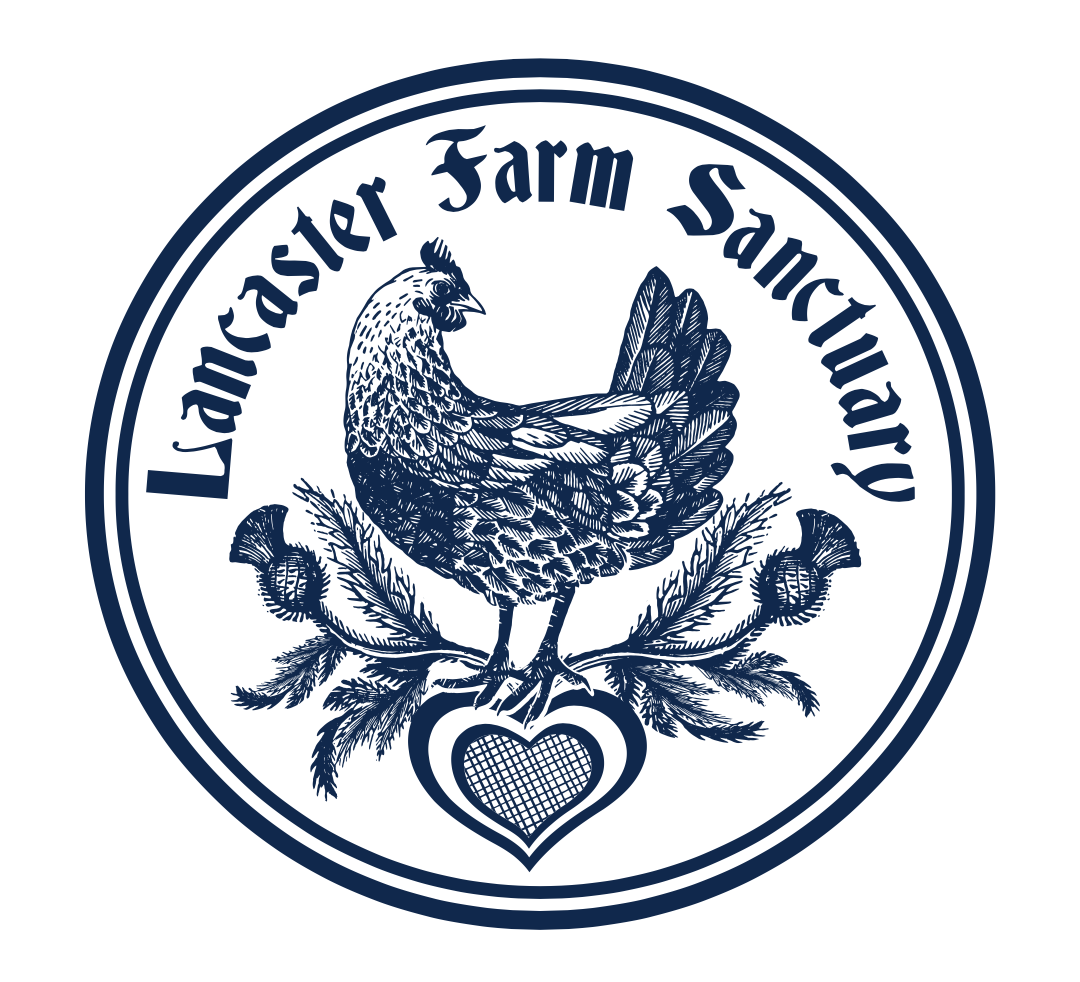 Lancaster Farm Sanctuary