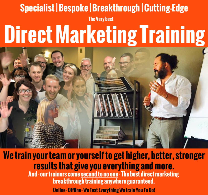 Orange-Beetle-Direct-Marketing-Training.jpg