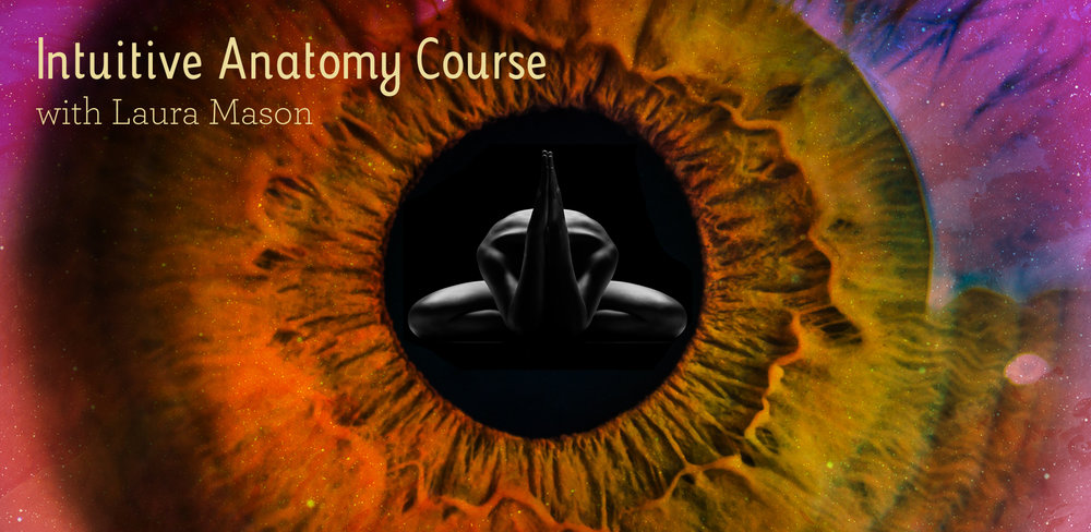 Laura Mason Web images-NEW Intuitive Anatomy .jpg