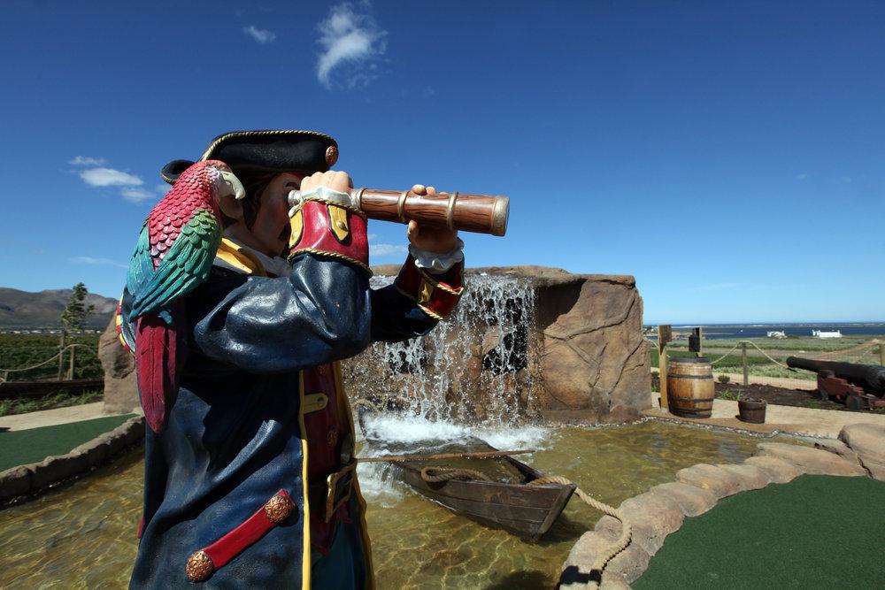 Pirate80.jpg