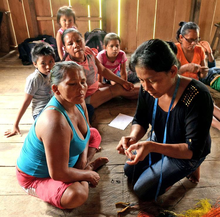 foto cortesía de Campbell Plowden / Center for Amazon Community Ecology