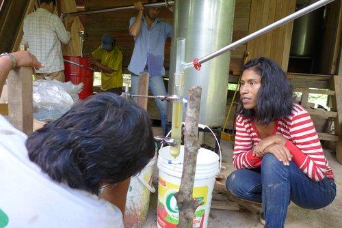 Destilando aceite esencial.