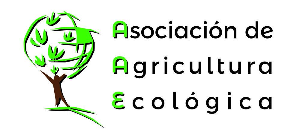 Logo AAE 2017.jpg