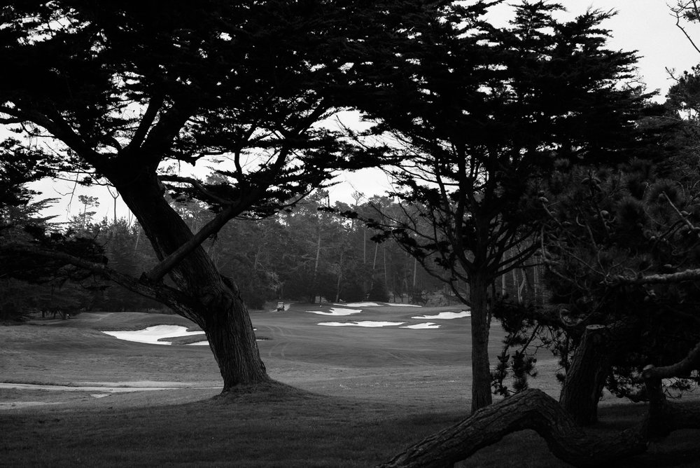 Cypress Point-9367.jpg