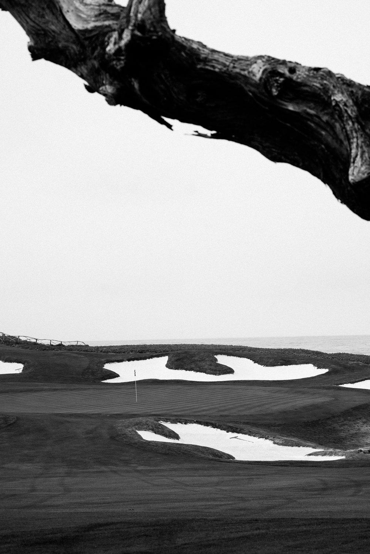 Cypress Point-9712.jpg