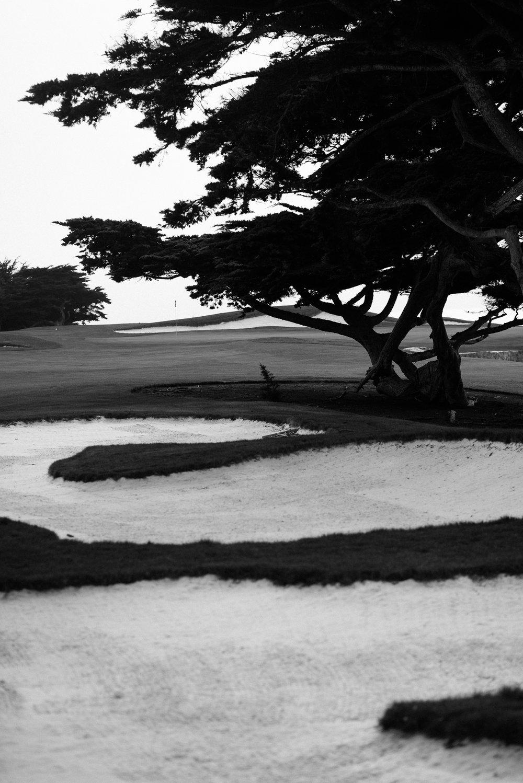 Cypress Point-9742.jpg