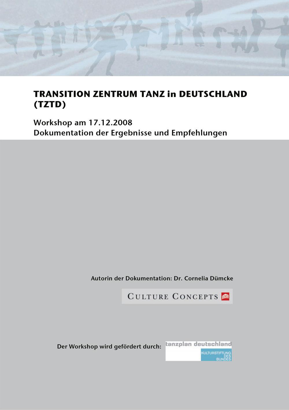 2008_DB_Dümcke_Workshop-zur-Gründung Transition Zentrum.jpg