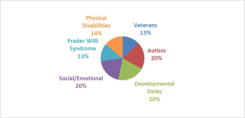 Client disabilitieschart.png