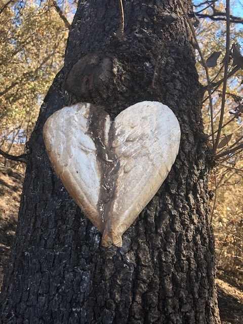 Heat from fire released sap down the middle of this heart