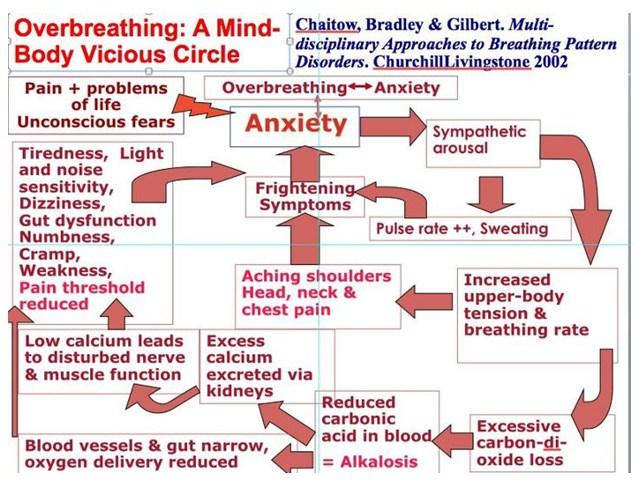 bf breathing-mind-body.jpg