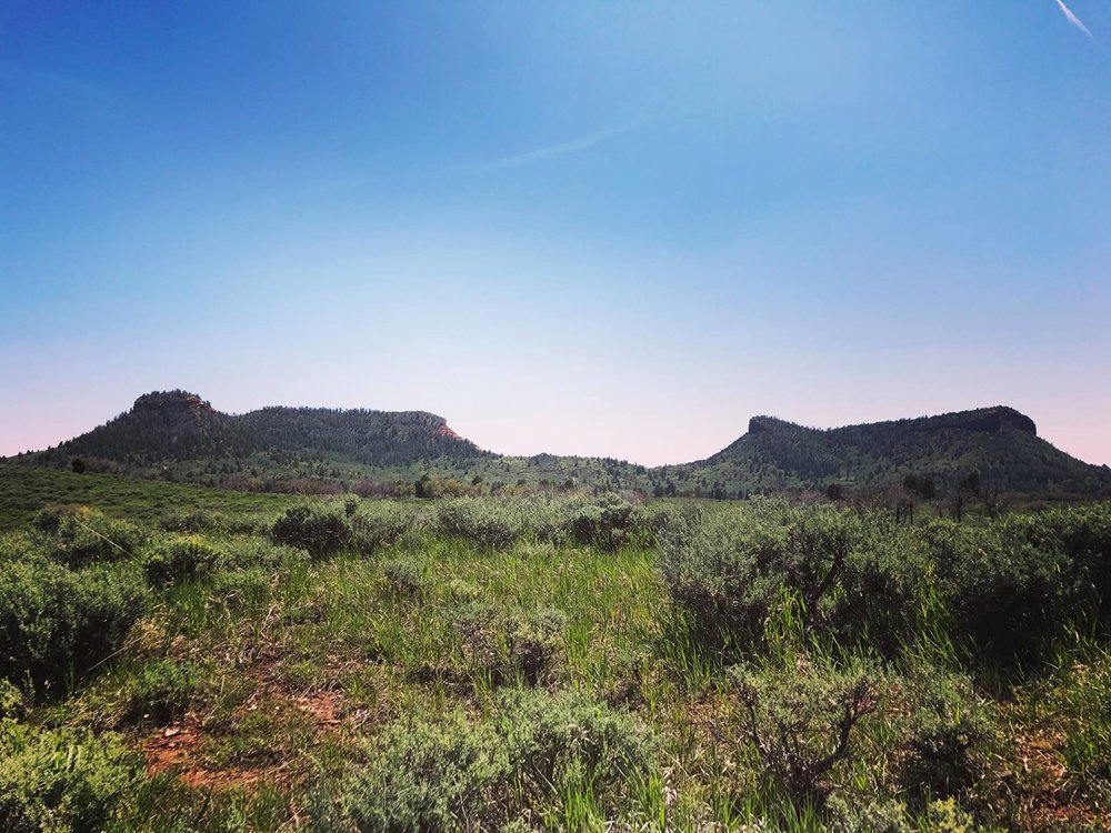 Bears Ears National Monument. Photo Courtesy: Jade Begay, Indigenous Rising Media.