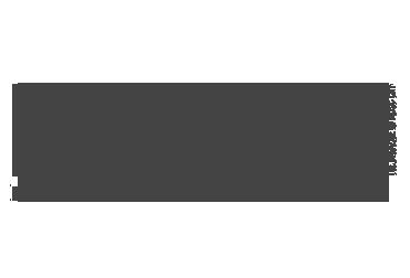 logo-nashville-lifestyles.png