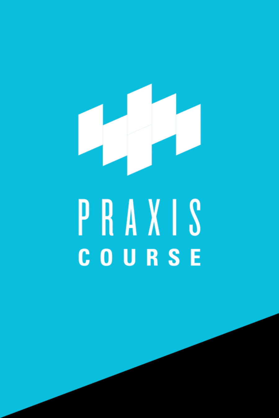 The Praxis Course
