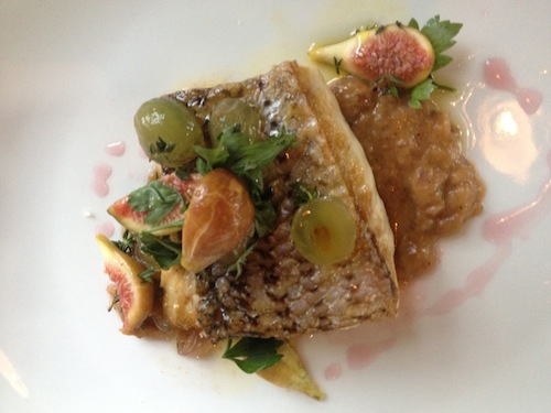 Striped Bass - The Optimist